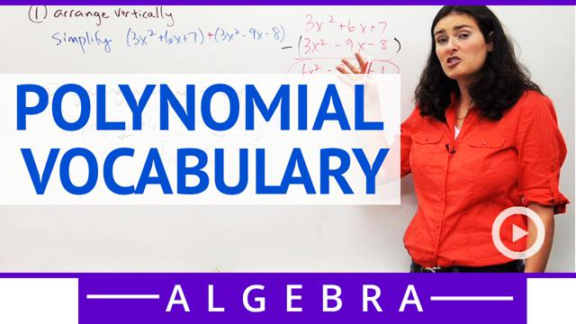 Polynomial Vocabulary - Concept