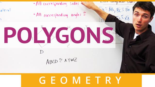 Polygons - Concept