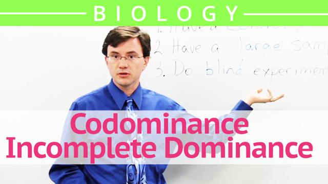 Codominance - Incomplete Dominance
